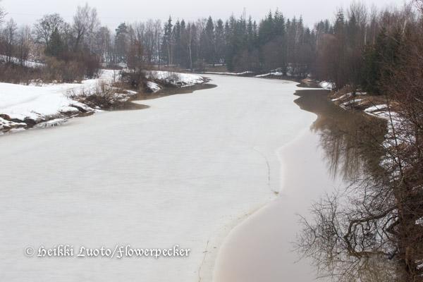 Vantaanjoki 140413