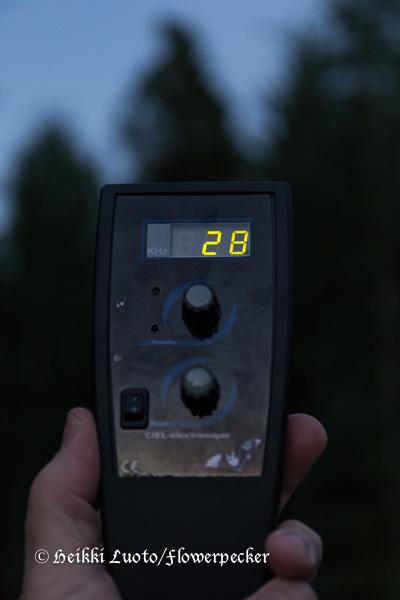 Detektori
